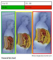 body-fat2